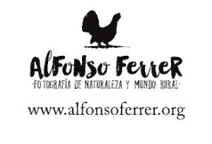 Alfonso Ferrer. Valle de Chistau.